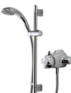 Exposed Mixer Shower