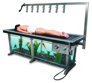 fish-tank-shower